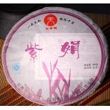 2010年 野生紫鹃