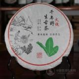 2010火烧千年野生古茶